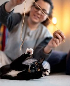 A woman sitting on the floor using a piece a yarn to play with her black cat.
